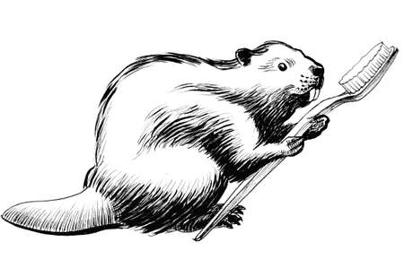 Beaver with tooth brush. Ink black and white illustration Stock Photo