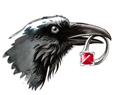 Crow bird with a stolen ring