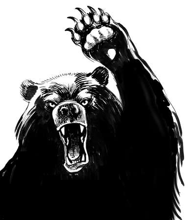 Angry bear. Ink black and white drawing