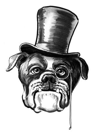 VIP bull dog in hat. Ink black and white drawing 스톡 콘텐츠