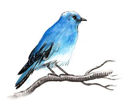 Blue bird on a tree