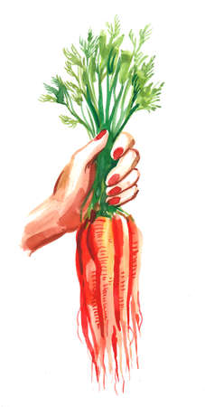 A hand holding a bunch of carrots Zdjęcie Seryjne