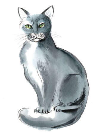 Grey sitting cat. Ink and watercolor illustration