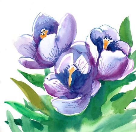 Purple flowers. Watercolor painting