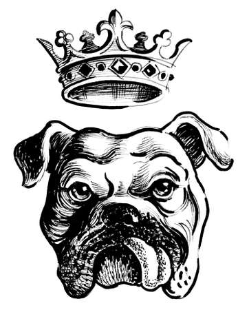 Bull dog and crown Banque d'images - 101886978