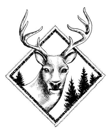 Deer in diamond shape