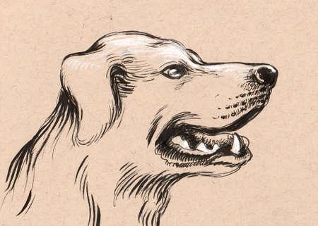 Dog head sketch Banque d'images - 101887011