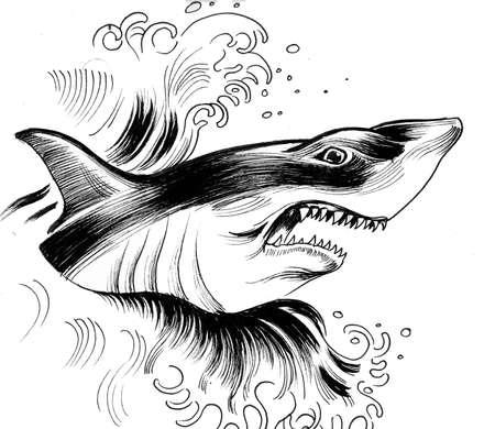 Angry shark 写真素材