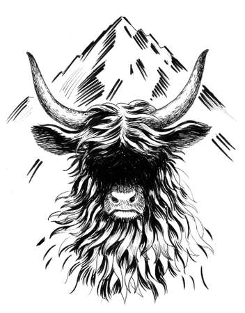 Yak bull. Ink black and white drawing 스톡 콘텐츠