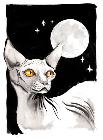 Sphinx cat and the moon. Ink and watercolor illustration