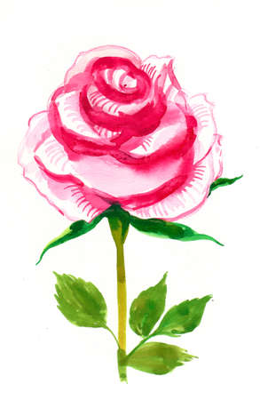 Watercolor painting of a single rose