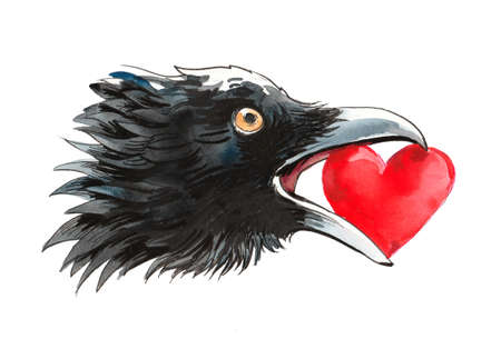 Crow with a stolen heart