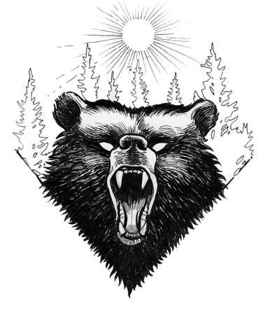 Furious bear Imagens