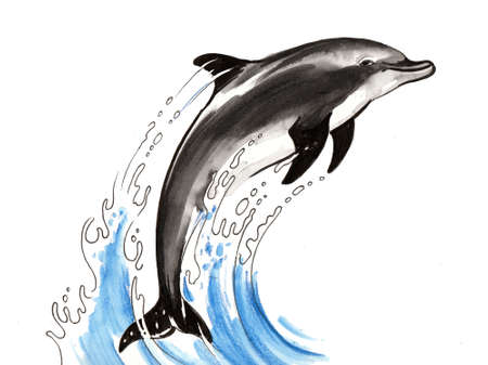 Jumping dolphine. Ink and watercolor illustration Stock Photo