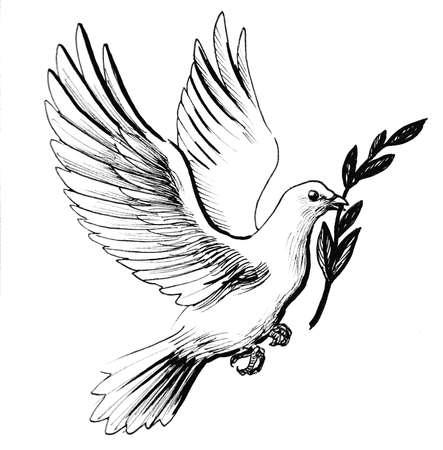 Weiße Taube mit Olivenzweig