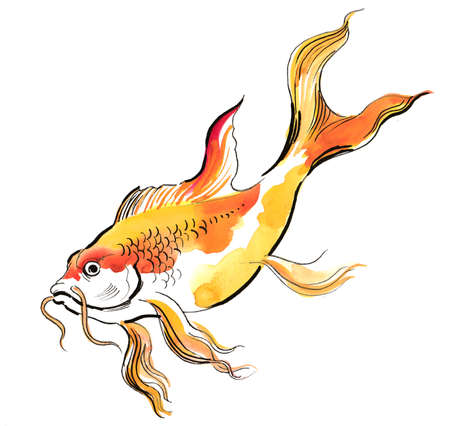 Golden fish. Ink and watercolor illustration