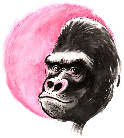 Gorilla and the red sun. Ink and watercolor illustration