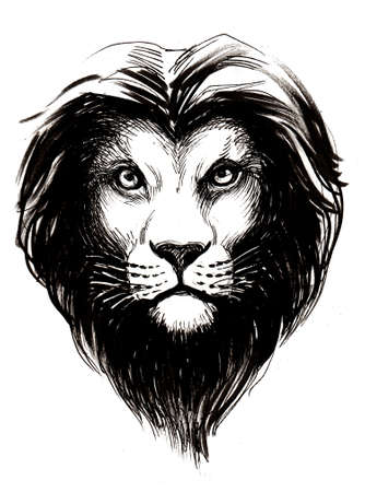 Lion's head. Ink black and white drawing