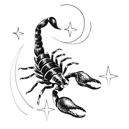 Scorpio zodiac sign. Ink black and white illustration Stock Photo