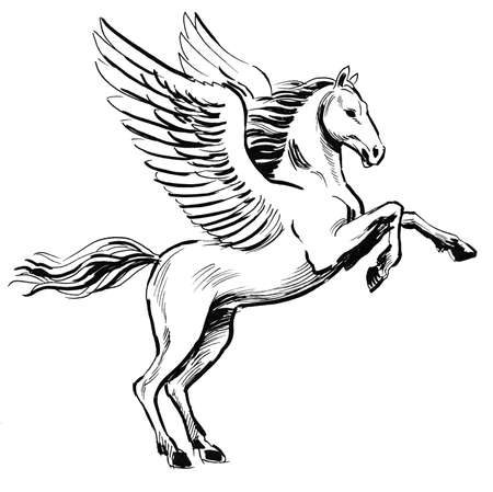 White Pegasus horse. Ink black and white illustration Banco de Imagens