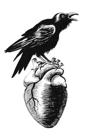 Raven sitting on a human heart
