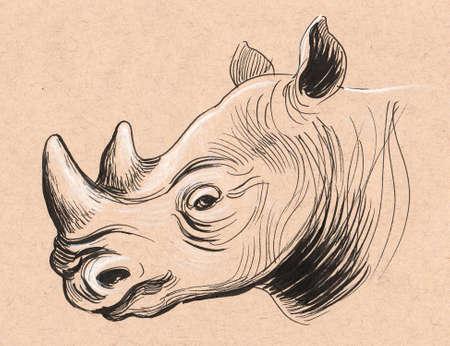 Rhinoceros sketch. Ink on colored paper Stockfoto