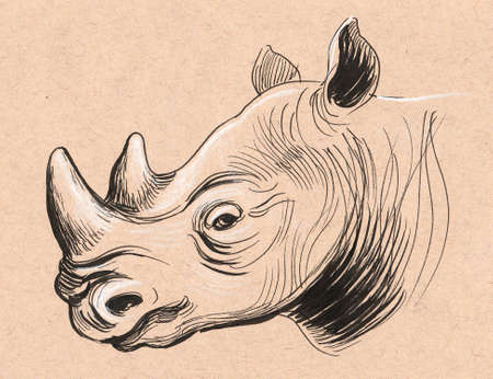 Rhinoceros sketch. Ink on colored paper Stock fotó