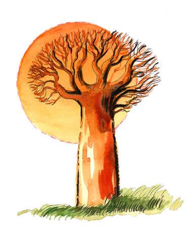 baobab and sub illustration