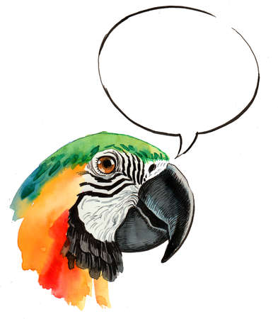 Talking parrot. Ink and  illustration