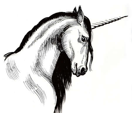 White unicorn. Ink black and white illustration Banque d'images