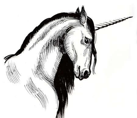 White unicorn. Ink black and white illustration 스톡 콘텐츠