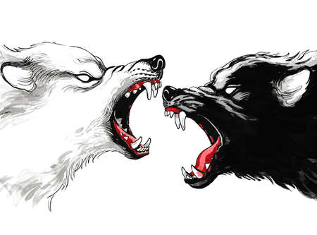 Black and white wolfs fighting. Ink and watercolor illustration Stock Photo