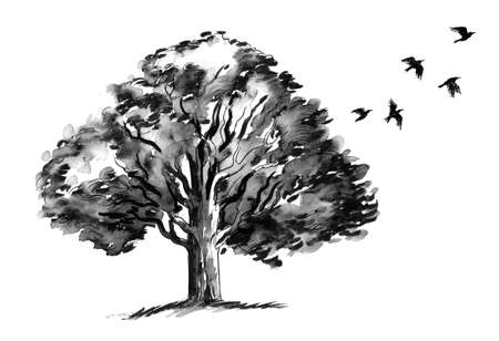 Big tree and flying birds. Ink black and white illustration Stock Photo