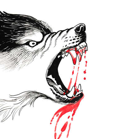 Bloody angry wolf. Ink and watercolor illustration Stock Photo