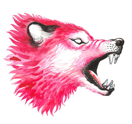 Red roaring wolf. Ink and watercolor illustration Imagens