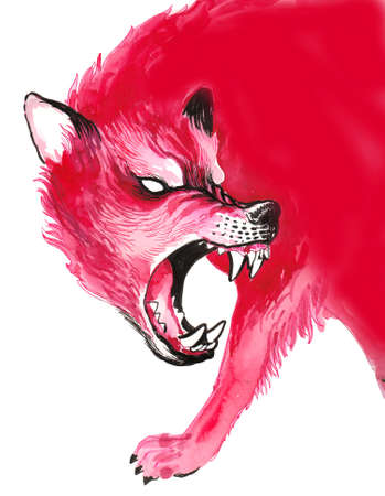 Angry red wolf. Ink and watercolor illustration