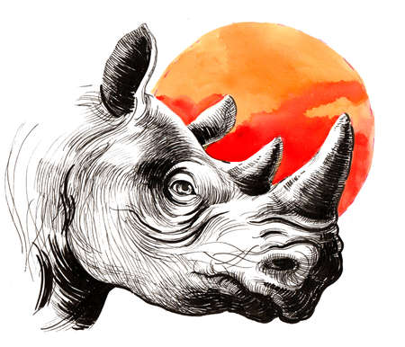 Rhinoceros and orange sun Stok Fotoğraf - 105721229
