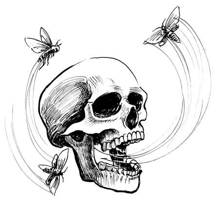 Human skull and flying moths. Ink black and white drawing