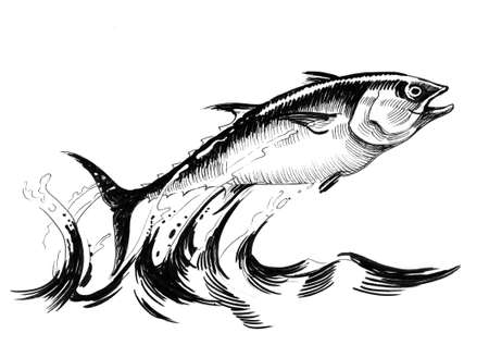 Jumping tuna fish. Ink black and white illustration Banco de Imagens