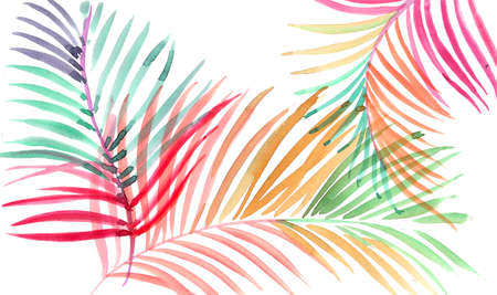 Palm leaves. Watercolor painting