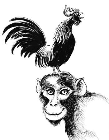 Rooster on the monkey. Ink black and white drawing