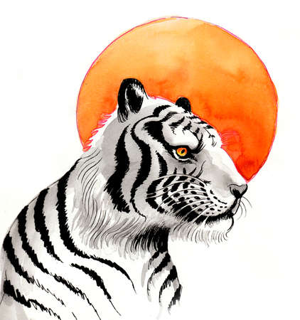 White tiger and orange sun. Ink and watercolor illustration Фото со стока