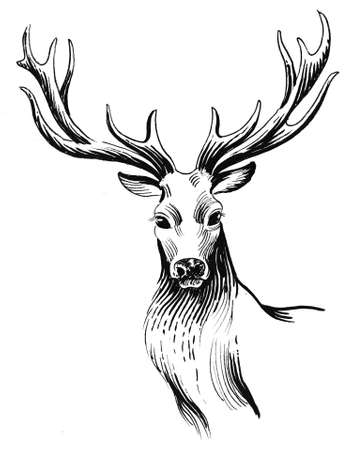 Deer head. Ink black and white illustration