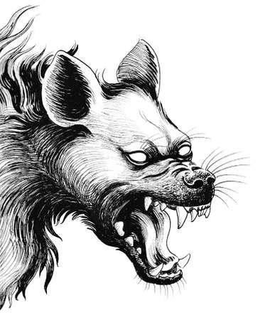 Scary hyena. Ink black and white illustration Stock Photo