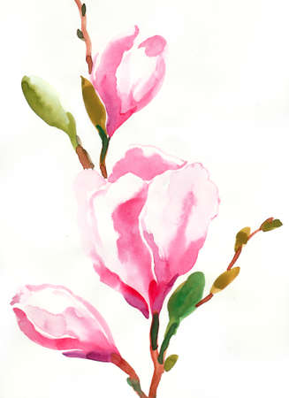 Blossoming tree branch. Watercolor illustration