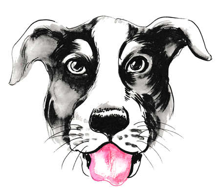 Puppy head. Ink and watercolor illustration