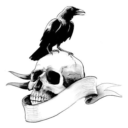 Black raven bird sitting on a human skull. Ink black and white drawing