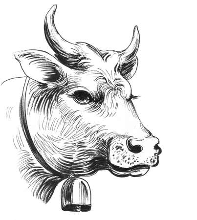 Cow head with a bell. Ink black and white illustration Stock Photo