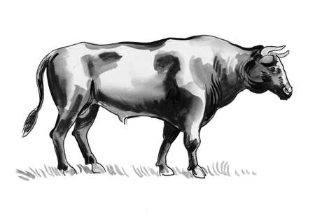 Ink and watercolor illustration of a standing big black bull Stock fotó