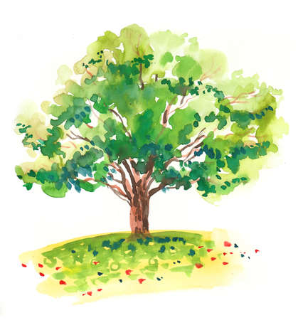 Big tree in the field.  illustration Stock Photo